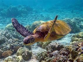 Bahia Terra de Belas Praias Atrativos Naturais e Rica Cultura