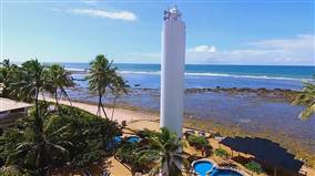 Seis Atrações Imperdíveis na Praia do Forte