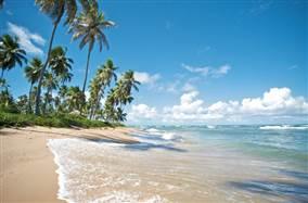 Praia do Forte, Um Paraíso No Litoral Brasileiro