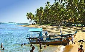 Praia do Forte As Atrações E O Mercado Imobiliário